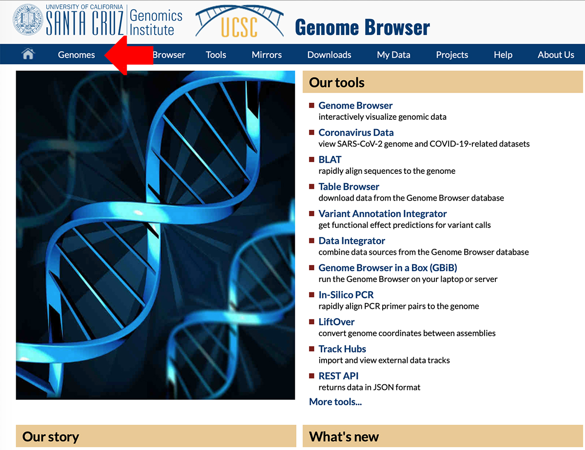 Screenshot of UCSC Genome Browser